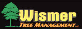 Wismer Tree Management Logo